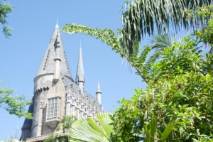 Harry Potter and the Forbidden Journey within the Wizarding World